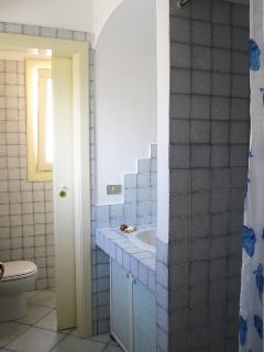 The bathroom with shower has separated wc and bidet room.