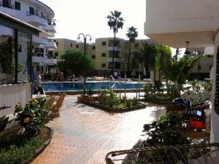 Garden and swiming pool view / Jardines y vista a la piscina
