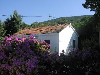 Lovely house near the sea, Molunat