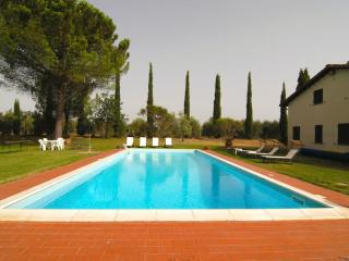 Villa Mimosa (V115), Pucciarelli