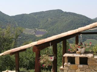 La Grange au milieu de 200h de bois privatif, calme et tranquilité assurés, Teyssieres