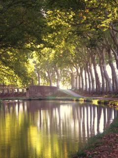 Approaching Millepetit along the Canal du Midi