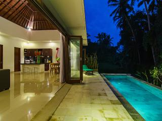 Ajun Villa, Private Pool, Ubud