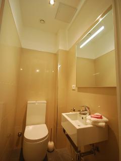 Third Toilet