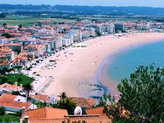 Bay View Apt. Beachfront 3 Bedrooms, Parking, Wifi, Sao Martinho do Porto