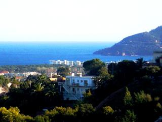 Villa with sea view, private pool and your own personal w/ 24 hr Chauffeur, Mandelieu-la-Napoule