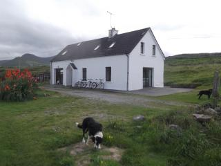 Sheehys Farmhouse with bicycles and pets at the ready!!