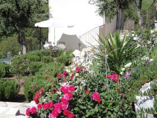 Our mediterranean gardens