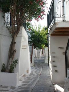 Rue principale vers la maison.