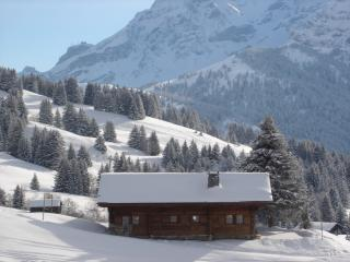 Luxury ski in/out 17th Century chalet (on piste) `007` style secluded setting