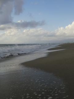 The beach is charming and u can choose to visit beach clubs or stay in the wild