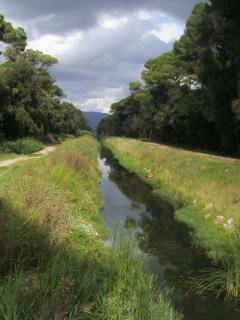 Along side this beautiful canal is the bike track leading to the beach, a lovely ride!