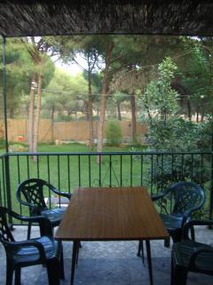 Vistas del jardín desde la terraza de atrás de la casa.