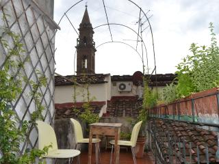 1 bedroom apartment with great terrace located just behind Florence's Santo Spirito Square