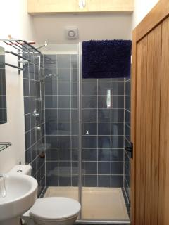 Shower room with spacious shower, toilet and sink.