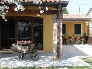 Particolari del Brenta - Rose, Oriago di Mira