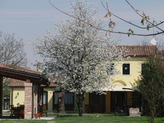 Particolari del Brenta - Elisa near Venice, Oriago di Mira