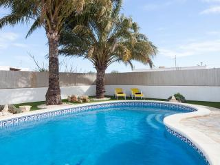 The pool area, with sun loungers for all guests and umbrellas and palms for shade