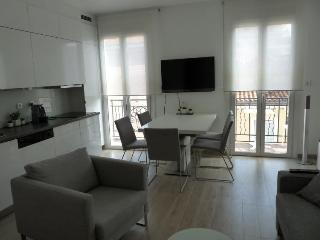 Andre 1 Bedroom Flat on Top Floor, Close to Beach, Croisette and Palais des Festivals, Cannes