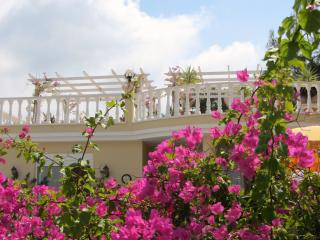 Honeymoon Villa Alanya - Private Pool & Gardens, Kargicak