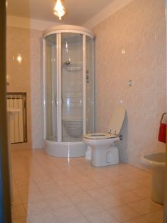 the bathroom (two bedroom apartment)