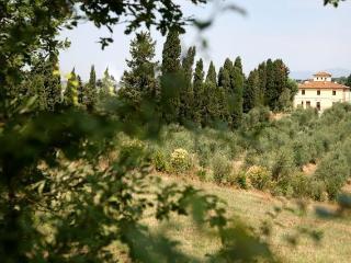 Agriturismo I Moricci-Pendolin, Fabbrica
