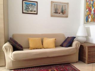 Homey, one bedroom apartment in the centre of Florence, internet acess, kids welcome!