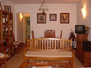 Lounge & Dining Room in Teak Wood
