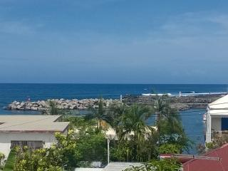 Maison Duplex  Terrasse Vue Mer