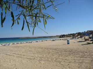 Beach in Aiya Napa