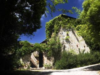 Villa Patrignone 7 bedroom Tuscany villa with pool