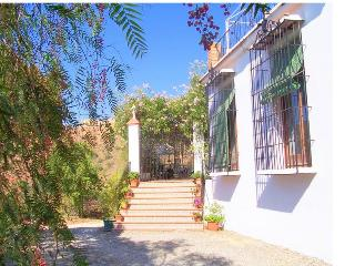 Old Andalusian grilles on the front and clay flower pots on the stairs
