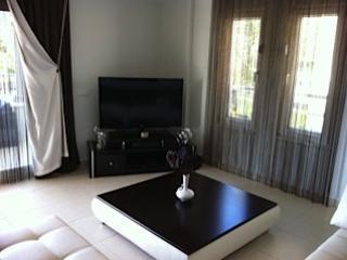 Lounge/TV Area