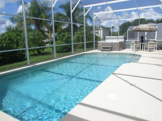 30 X 15 PRIVATE SOUTH FACING POOL AND HYDRO SPA