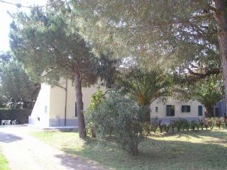 MARE ETRUSCO Bilocale in Colonica 4