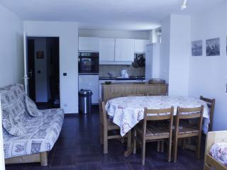 appartement 70m les deux alpes, Venosc