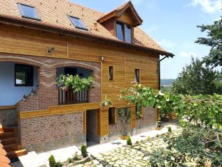 • Villa Zollo • Holiday cottage at the Carpathian foothills