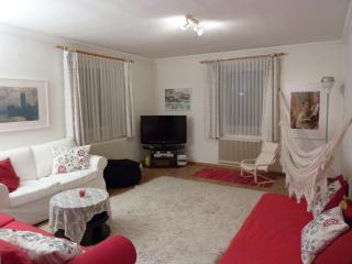 spacious 3 room apartment close to the historical center, private parking, wifi