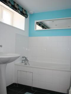 The bathroom / toilet
