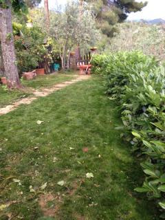 giardino spazioso,