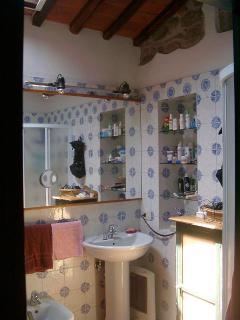 bagno con la doccia, bathroom with a shower