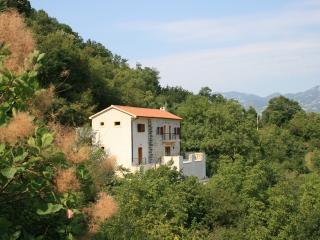 Villa Miela, Podgorica
