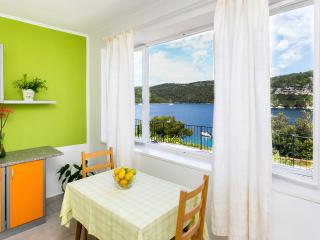 Great apartment in National Park!!!, Mljet Island