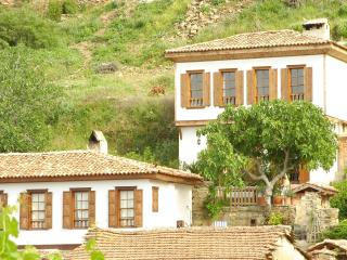Fig House,Terrace Houses of Sirince