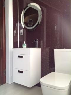 Upgraded downstairs bathroom