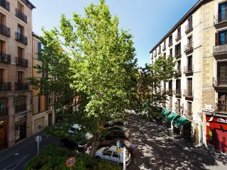 Calle Mayor apartment