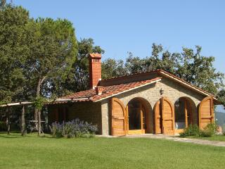 The Hut. Villa with pool, San Giustino Valdarno