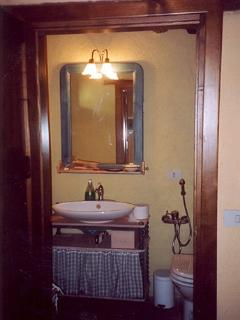 bath-room with large shower