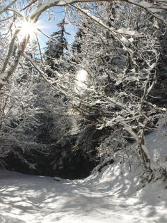 Montagny en hiver