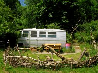 The Hippy Van, Llandysul